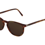lunettes-de-soleil-polo-ralph-lauren-homme-3