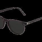 lunettes-de-soleil-polo-ralph-lauren-homme-4